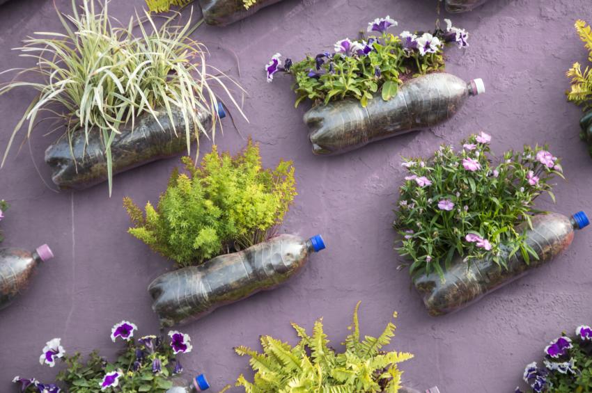 huerto-urbano-jardin-vertical