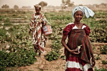 mauritania-ong-oxfam-intermon
