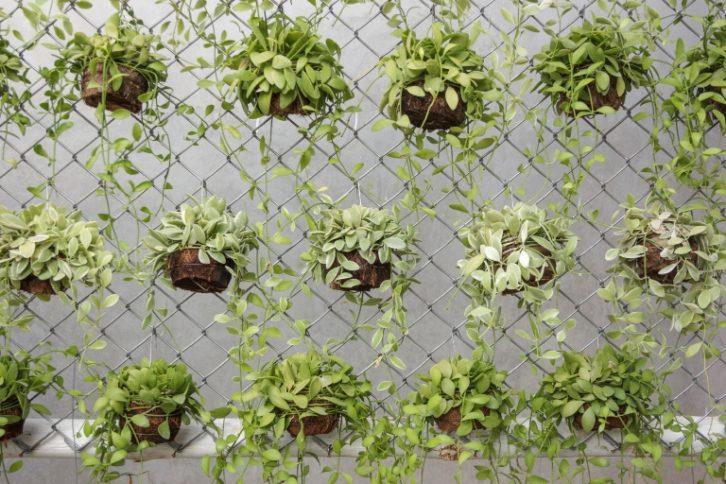 C mo hacer un huerto urbano descarga nuestra gu a for Hacer un huerto en el jardin