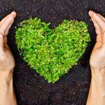Responsabilidad social ambiental: la conciencia colectiva para mejorar el mundo