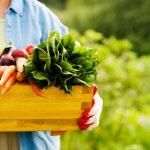 5 verdades y mitos sobre los productos orgánicos