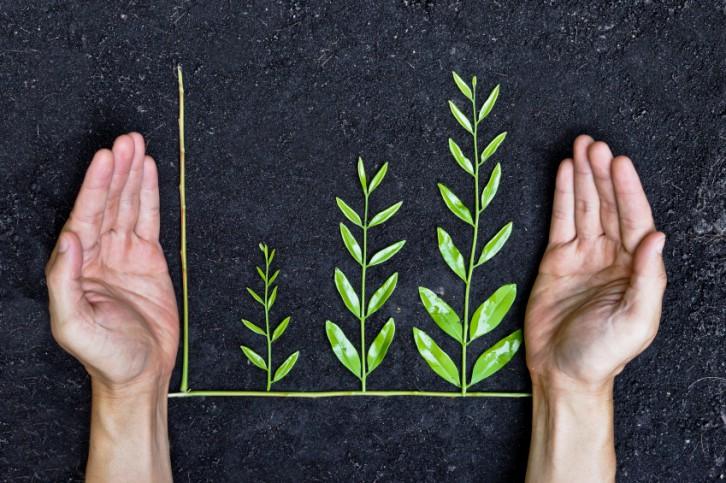 empresas-solidarias-sostenibles