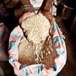 Descubre la gastronomía de Mozambique con esta receta con arroz