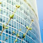 ¿Puede haber sostenibilidad ambiental sin sostenibilidad económica?