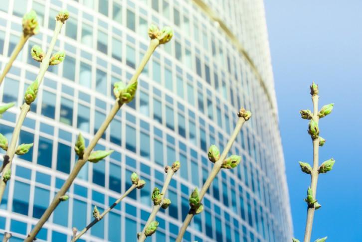 La sostenibilidad económica es esencial para garantizar la protección del medio ambiente.