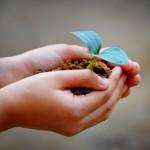 El efecto invernadero en casa: actividad con los más pequeños