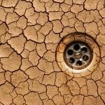 ¿Qué consecuencias tendrá el calentamiento global sobre nuestra salud?
