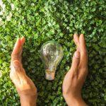 Las ideas más divertidas para el reciclaje creativo