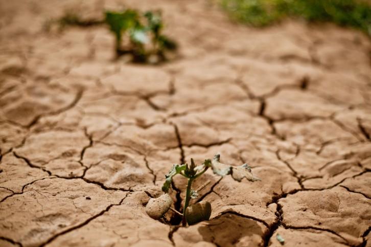 """""""desarrollo-sostenible"""""""