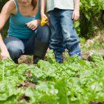 Actividades infantiles para promover el consumo responsable del agua