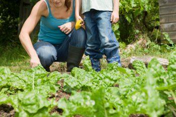 actividades-infantiles-consumo-responsable-agua
