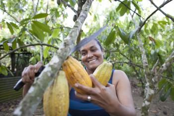 © Guadalupe de la Vallina (Maribel Villar trabajando en su plantación de cacao)