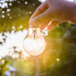 ¿Qué es el equilibrio ecológico?