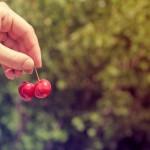 Recetas saludables para recibir la primavera