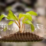6 ideas para reutilizar productos cotidianos