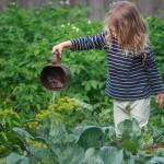 5 ventajas de los huertos ecológicos