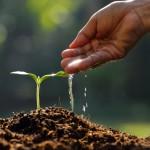 ¿En qué consiste la responsabilidad medioambiental?