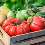 Tienda ecológica, otra forma de entender la venta de productos