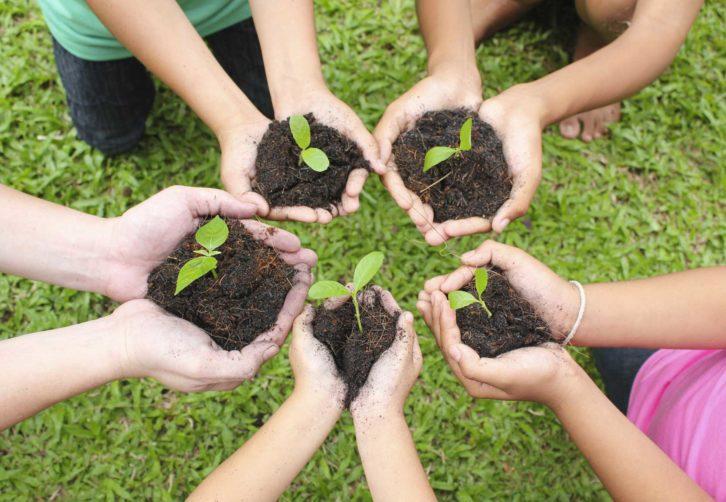 ecologia-social