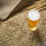 Levadura de cerveza y germen de trigo: alimentos naturales y de Comercio Justo