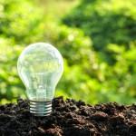 ¿Qué es la ecoinnovación? Conoce el desarrollo del futuro