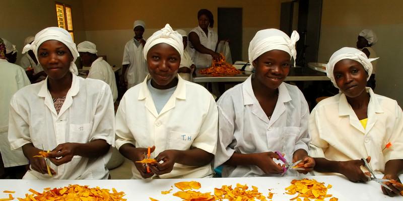 © Omar Traoré/ Oxfam Intermón Mujeres trabajadoras cortando mangos en la planta procesadora Bérégadougou.