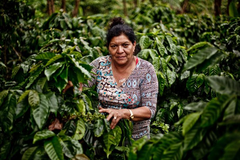 © Pablo Tosco/ Oxfam Intermón Victoria González en su parcela de café, productora de la comunidad de Palo Blanco, que comercializa su café en España bajo el nombre de Madre Tierra. Es socia de Aldea Global.