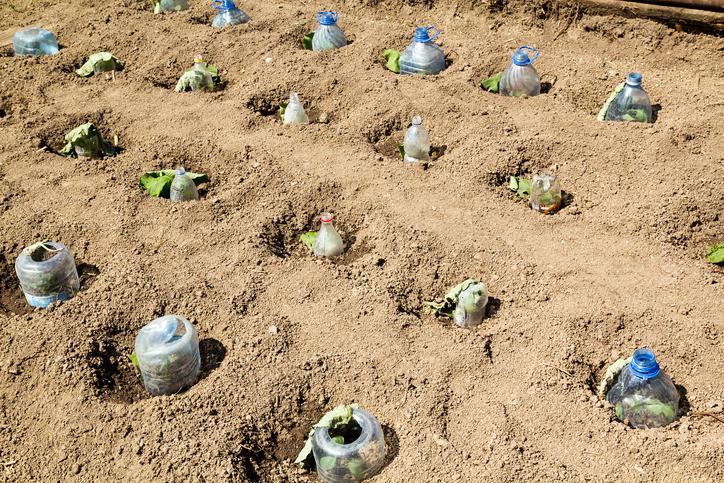Invernaderos y semilleros caseros con materiales for Construccion de viveros e invernaderos