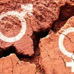Algunas cifras sobre la desigualdad de género en España
