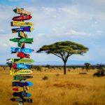 ¿Dónde hacer voluntariado en África?