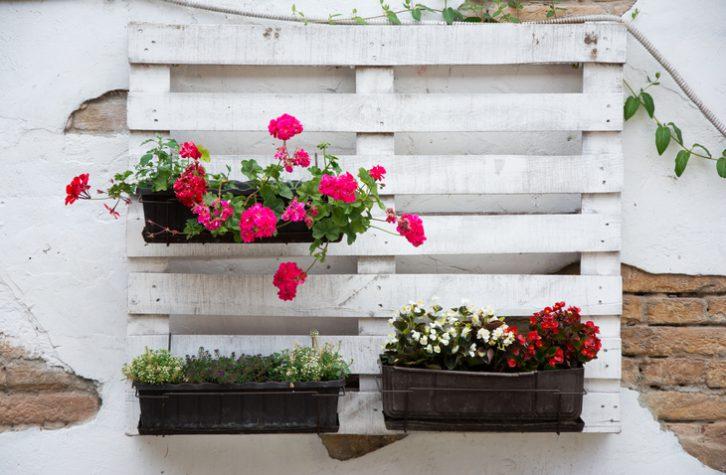 """""""jardineras-con-palets"""""""
