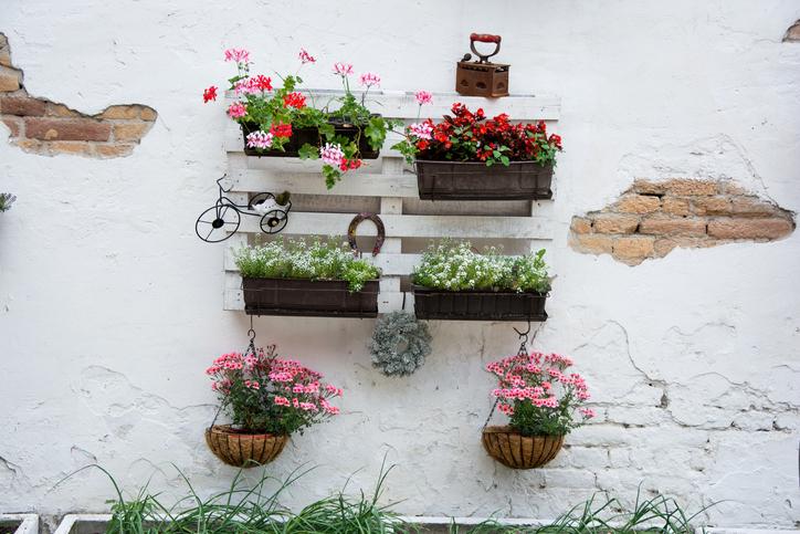 """jardin-vertical-con-palets"""