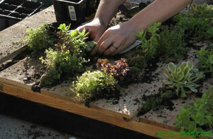 """""""jardinera-vertical-con-palets-reciclados"""""""