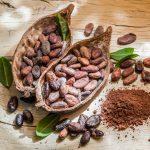El lado oscuro del chocolate: todo lo que tienes que saber