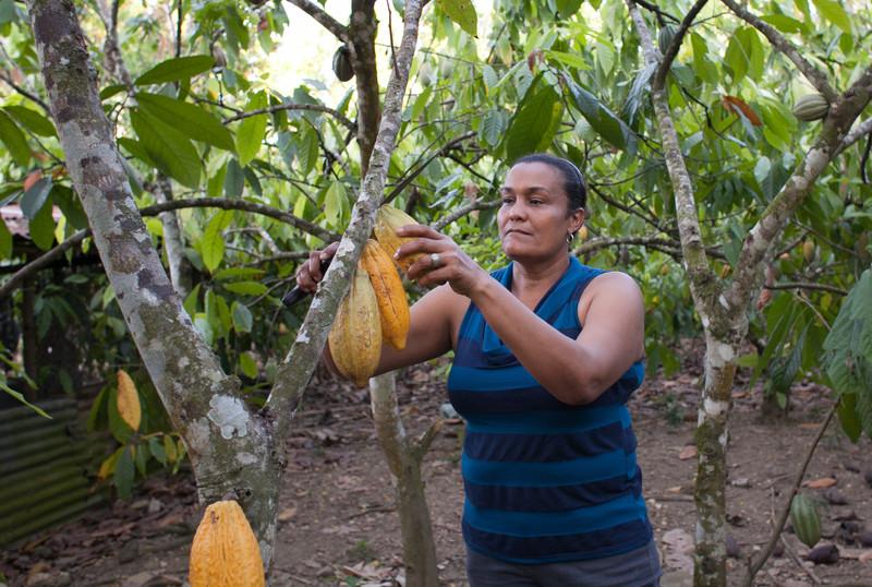 """""""mujer-productora-cacao-comercio-justo"""""""