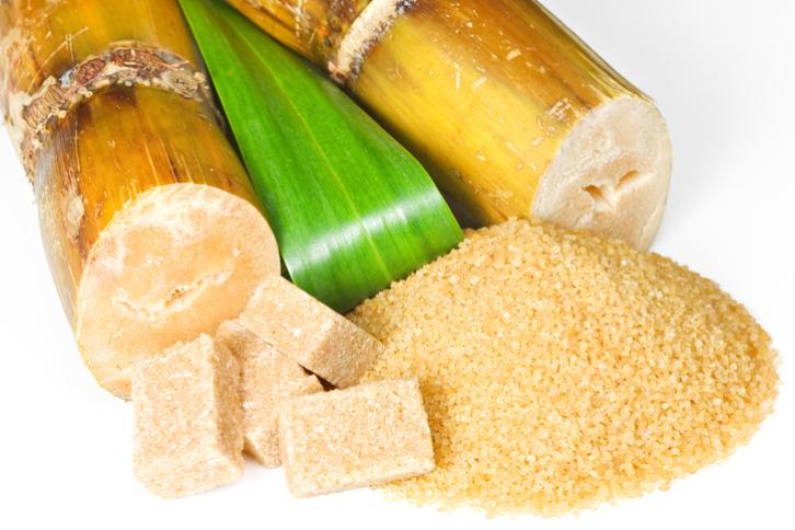 Como se obtiene la azucar de cana