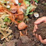 ¿Cómo hacer compost casero?