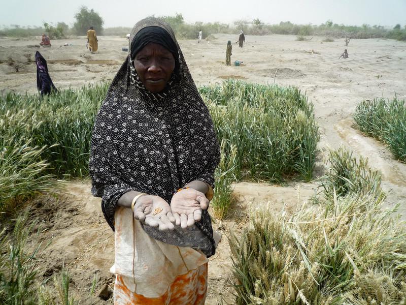"""""""crisis-desplazados-nigeria-y-lago-chad"""""""