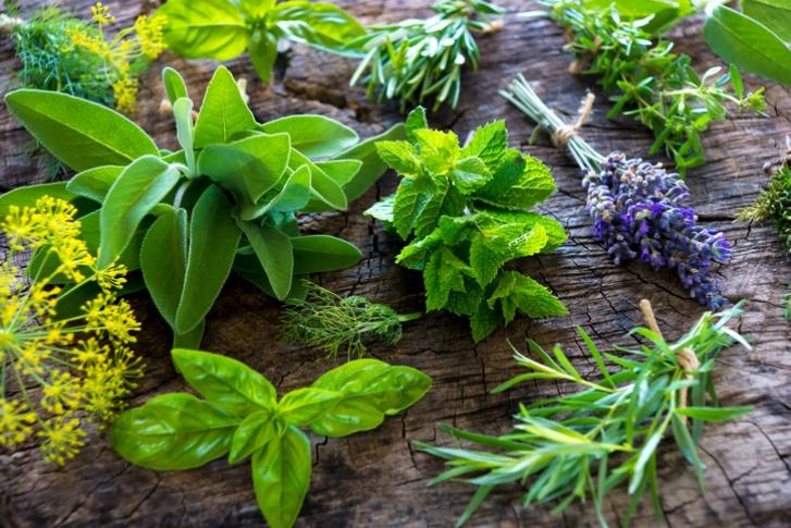 """""""diy-con-plantas-aromaticas"""""""