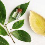 Recetas de cosmética vegana con ingredientes de Comercio Justo