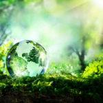 ¿Cómo puedo consumir energía verde?