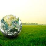 El derecho social a un medio ambiente sano