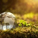 Economía circular: ejemplos en el día a día