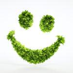 Elige materiales sostenibles para tus manualidades, ¡te damos ideas!