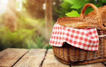 """""""comidas-frías-para-llevar-de-picnic"""""""